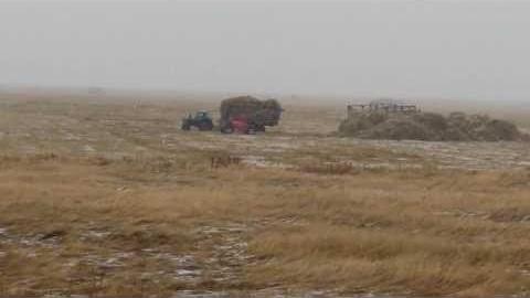 Под Соль-Илецком пенсионерка разбилась, упав состога сена