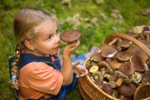 На Херсонщині від отруєння дикорослими грибами померло троє дітей
