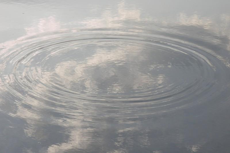 Пьяная мать переходила реку Донгуз сдвухлетней дочкой, ребенок потонул